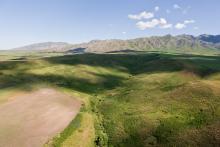 panorama de steppe verdoyante