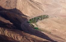 Petite oasis au sud de Ouarzazate